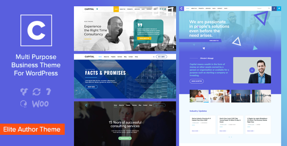 Capital – 多用途商业网站模板WordPress主题